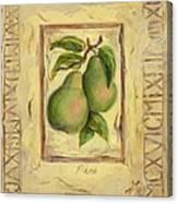 Italian Fruit Pears Canvas Print