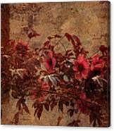 Italian Impasto Style Coral Floral Branch Canvas Print