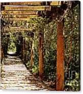 Italian Pergola Hallway Canvas Print