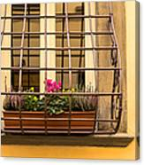 Italian Window Box Canvas Print