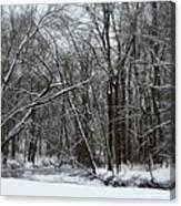 Its A Beautiful Winter Canvas Print