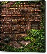 Ivy And Bricks Canvas Print
