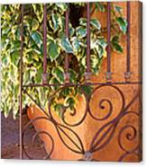 Ivy And Old Iron Gate Canvas Print