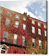 Ivy Covered Georgian Style Building In Canvas Print