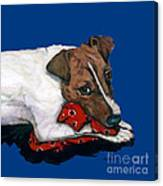 Jack Russell With A Red Bandana Canvas Print