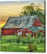 Jackson Orchard Canvas Print