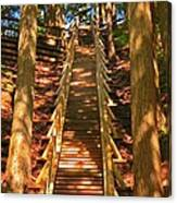 Jacobs Ladder Canvas Print