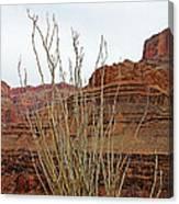 Jacob's Staff Grand Canyon Canvas Print