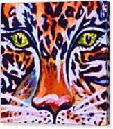 Jaguar Eyes-  Canvas Print