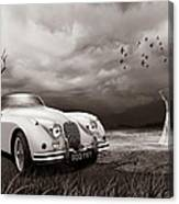 Jaguar Xk150 - Admiring The View Canvas Print