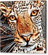 Jaguareyes Canvas Print