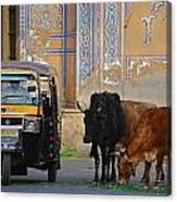 Jaipur Canvas Print