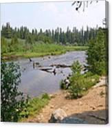 James Creek Pond Canvas Print