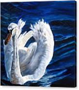 Jamie's Swan Canvas Print
