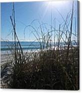January On A Florida Beach Canvas Print