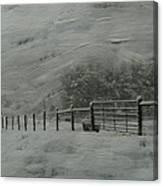 January Storm Canvas Print