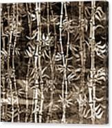 Japanese Bamboo Sepia Grunge Canvas Print