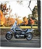 Japanese Muscle Canvas Print
