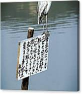 Japanese Waterfowl - Kyoto Japan Canvas Print