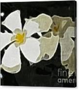 Jasmine Expressive Brushstrokes Canvas Print