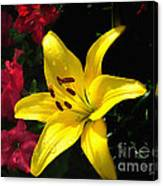 Jaune Et Rouge Canvas Print