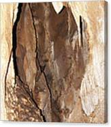 Javoricko Stalactite Cave Canvas Print