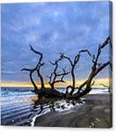 Jekyll Island Seascape Canvas Print