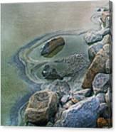 Jekyll Island Tidal Pool Canvas Print