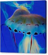 Jellyfish 2 Digital Artwork Canvas Print
