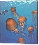 Jellyfish And Mr. Bones Canvas Print