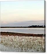Jepson Prairie Vernal Pools Canvas Print