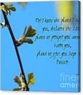 Jeremiah 29 Canvas Print