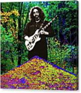 Jerry At The Cosmic Pyramid In The Woods  Canvas Print