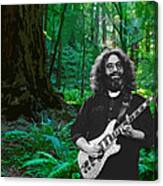 J G In Muir Woods Canvas Print