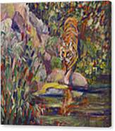Jerrys Tiger Canvas Print
