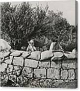 Jews Guard Their Settlement Canvas Print