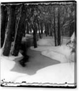 Job's Winter Stream Canvas Print
