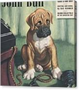 John Bull 1949 1940s Uk Dogs  Magazines Canvas Print