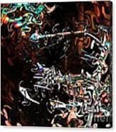 John Cale #2 Canvas Print