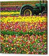 John Deere Tulips Canvas Print