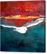 Jonathan Two Canvas Print