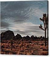Joshua Tree Hidden Valley Panorama Canvas Print