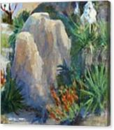 Joshua Tree National Monument Canvas Print