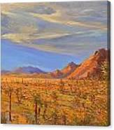 Joshua Tree National Park 2 Canvas Print