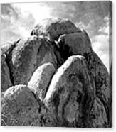 Joshua Tree Rocks Joshua Tree Canvas Print