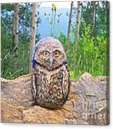 Journey Of Burrowing Owl Canvas Print