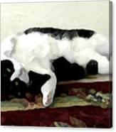 Joyful Kitty Canvas Print
