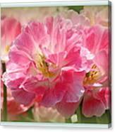 Joyful Spring Tulips Canvas Print