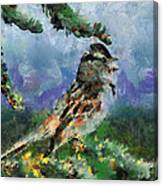 Joyfull Bird Canvas Print