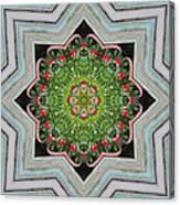 Jubilant Mandevilla Kaleidoscope Pattern Canvas Print